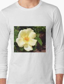 Pale Yellow Shrub Rose Long Sleeve T-Shirt