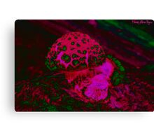 Psychedelic Shroom Canvas Print