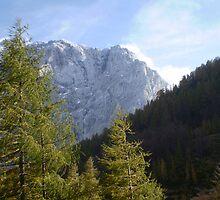 White Peaks by oscars