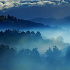 Clouds over Huon Valley............Tasmania by Imi Koetz