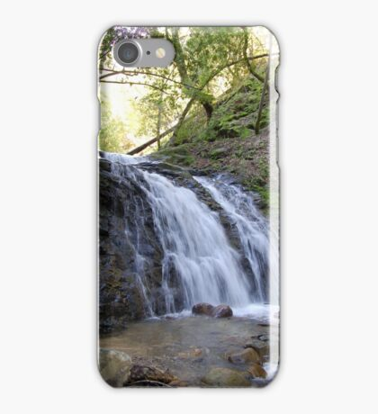 Uvas Canyon County Park iPhone Case/Skin
