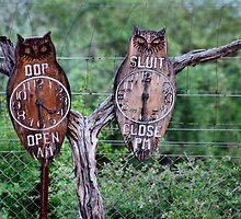 "A ""TIMELESS"" GATE CLOCK! by Magriet Meintjes"
