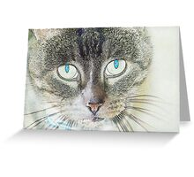 Pencil puss Greeting Card