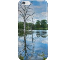 Dead Tree in the Lake iPhone Case/Skin