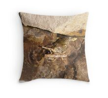 Attack of the Baby Turtle Throw Pillow