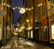 Old Town, Stockholm by Eivor Kuchta
