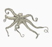 Vector illustration of hand drawn with octopus Baby Tee