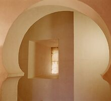 Aljaferia Hidden Passage by Reese Forbes