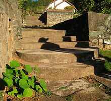 Swaziland Staircase by Jared Walker