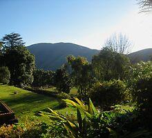 Swaziland Landscape by Jared Walker