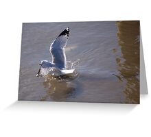 One Point Landing Greeting Card