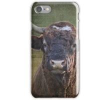 Portrait of a Bull iPhone Case/Skin