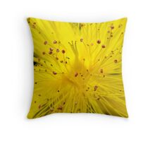 Scatterbrained Throw Pillow