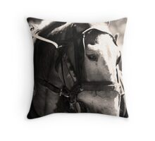 Mule Throw Pillow