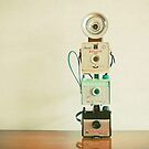 Tower of Cameras by Cassia