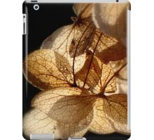 Fairy Wings - JUSTART ©  iPad Case/Skin