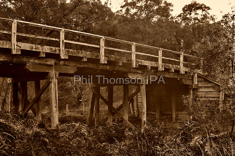 """""""Spanning Time and Sutherland's Creek"""" by Phil Thomson IPA"""