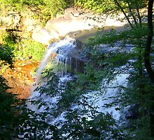Waterfall at Brecksville Metroparks by Rachel Counts