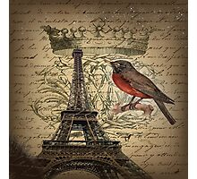 elegant scripts crown robin vintage paris eiffel tower  Photographic Print