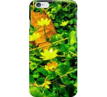 Wild Flowers on Potomac River Bank iPhone Case/Skin
