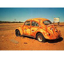 desert bug Photographic Print