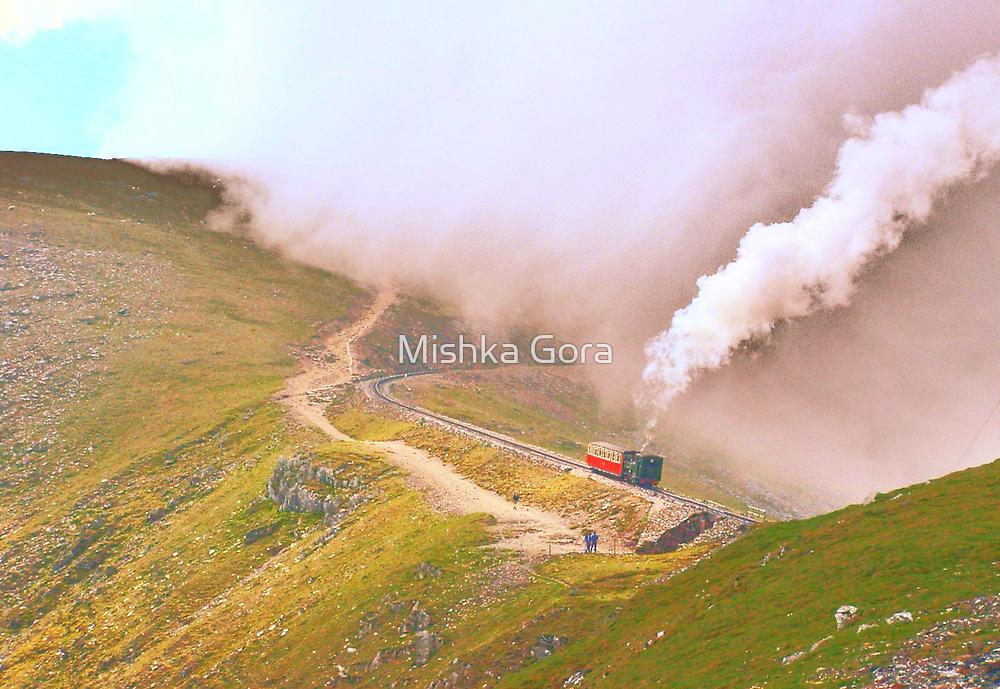 Train on Snowdon by Mishka Góra