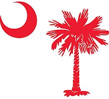 Red Palmetto Moon Photographic Print