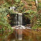 Waterfall - Glen Of Aherlow, Ireland by pms32