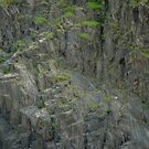 Barron Gorge Wall by Chris Cohen