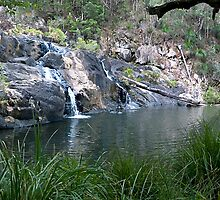 Booloumba Creek by Peter Ford