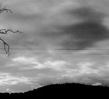 The Oncoming Storm  by Daz Zammit