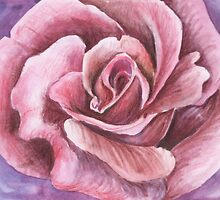 Rose by Rashmita & Raj