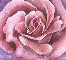Rose by Rashmita B-C