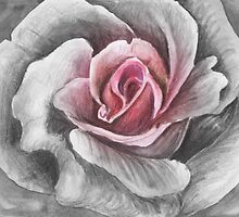 Heart of a rose by Rashmita & Raj