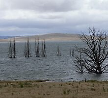 """Summer Storm"" approaching Lake Eucumbene by eucumbene"