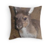 Young kangaroo Throw Pillow