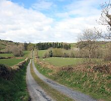 Scenic Irish country road by John Quinn