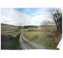 Scenic Irish country road Poster