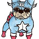 Captain America x French Bulldog by Liddle-Ideas