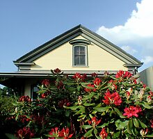Rhode Island Rhododendron Reds at Railroad Station in Kingston by Jack McCabe