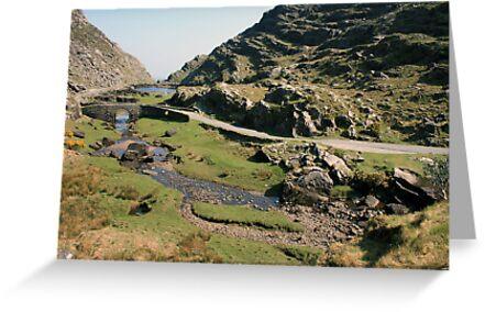 Gap of Dunloe by John Quinn