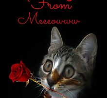 From Meeeowwww by Ladymoose
