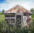 The Old Dairy by Dianne  Ilka