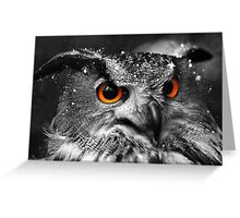 African Eagle Owl part 2 Greeting Card