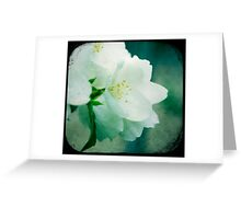 One with Life Greeting Card