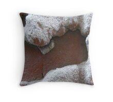 Mortar Throw Pillow