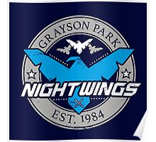 Grayson Park Nightwings Grey Blue (02 of 04) Poster