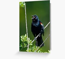 My Song Greeting Card