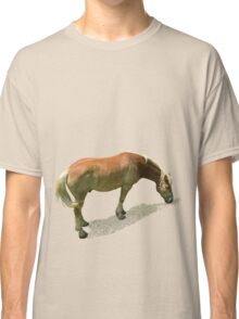 Horse from Kristberg (T-Shirt & iPhone case) Classic T-Shirt