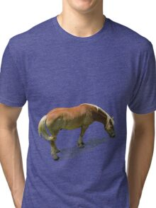 Horse from Kristberg (T-Shirt & iPhone case) Tri-blend T-Shirt